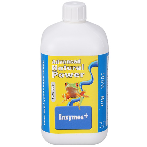 Enzymes+ 0.500ml