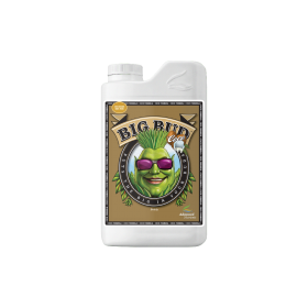 Big Bud Coco 0.250ml